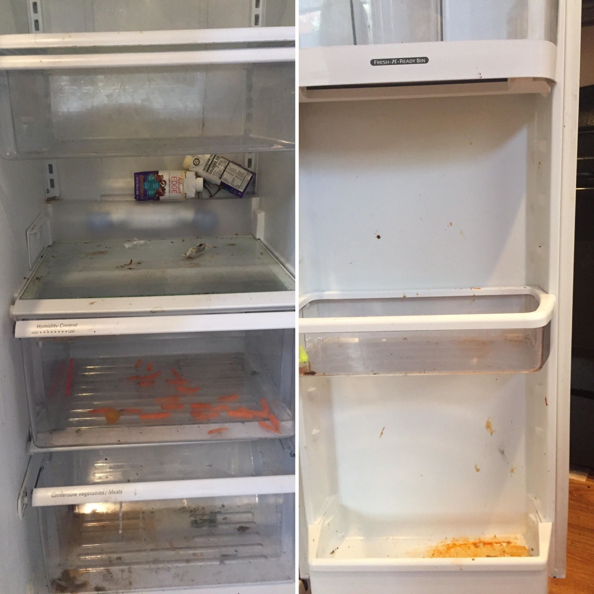refrigerator before being cleaned