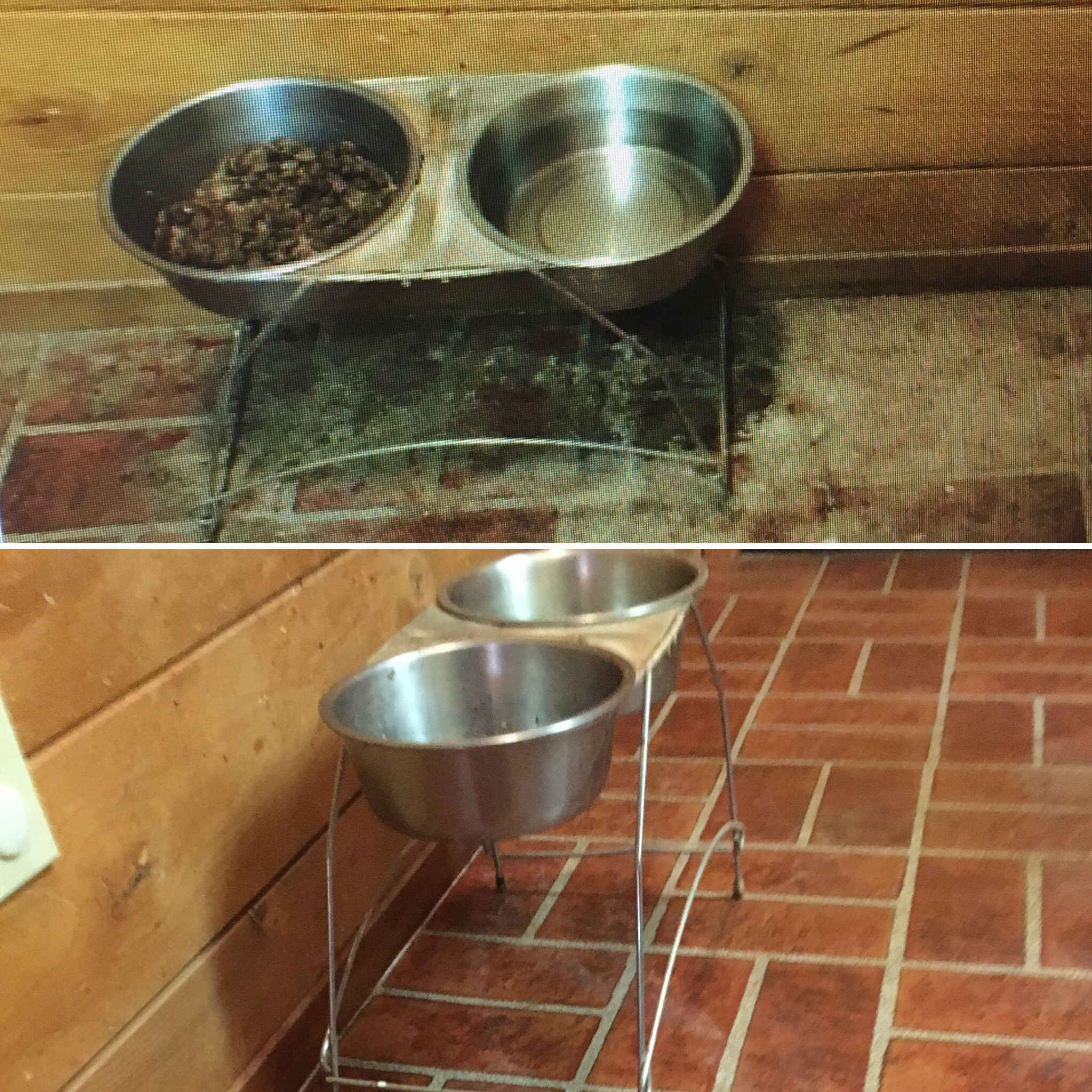 pet food area before and after cleaning